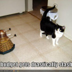 funny-pictures-cat-dr-who-bbc-budge